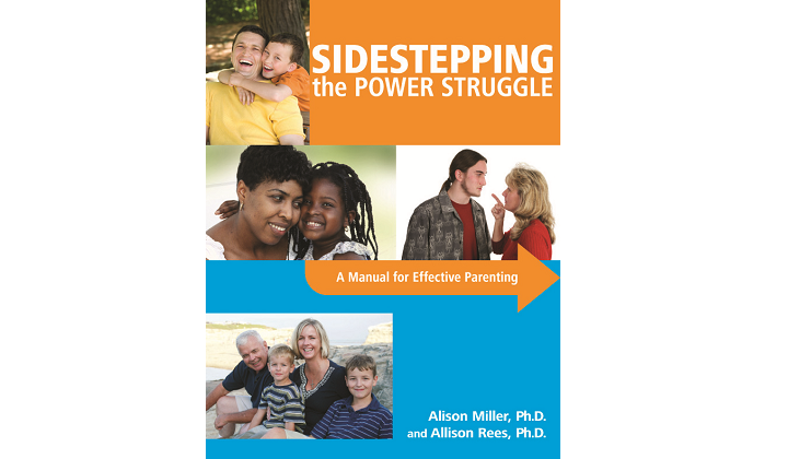 Sidestepping the Power Struggle - Published Book