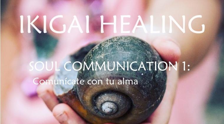 Soul Communication 1: Comunícate con tu Alma