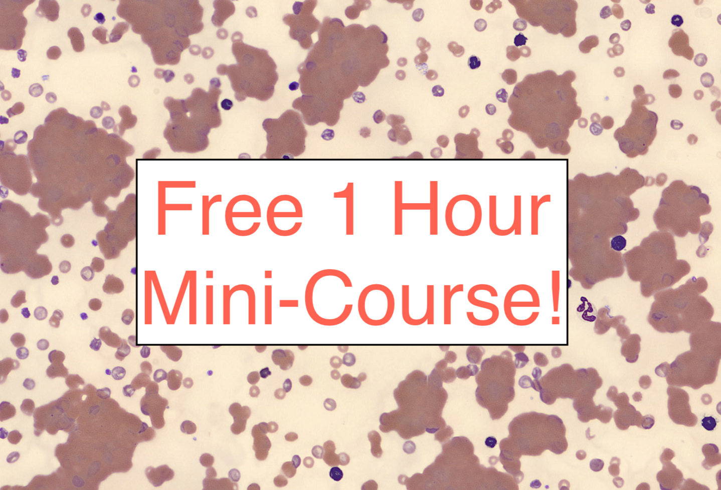 Ten Things Everyone Should Know about Hematology [Free Mini-Lesson!]