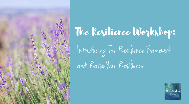 The Resilience Workshop