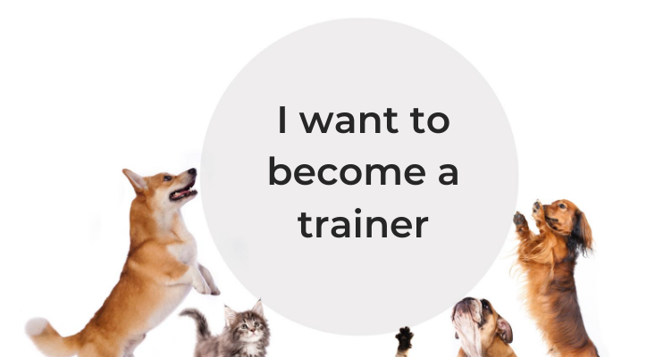 I want to become a trainer/behaviourist