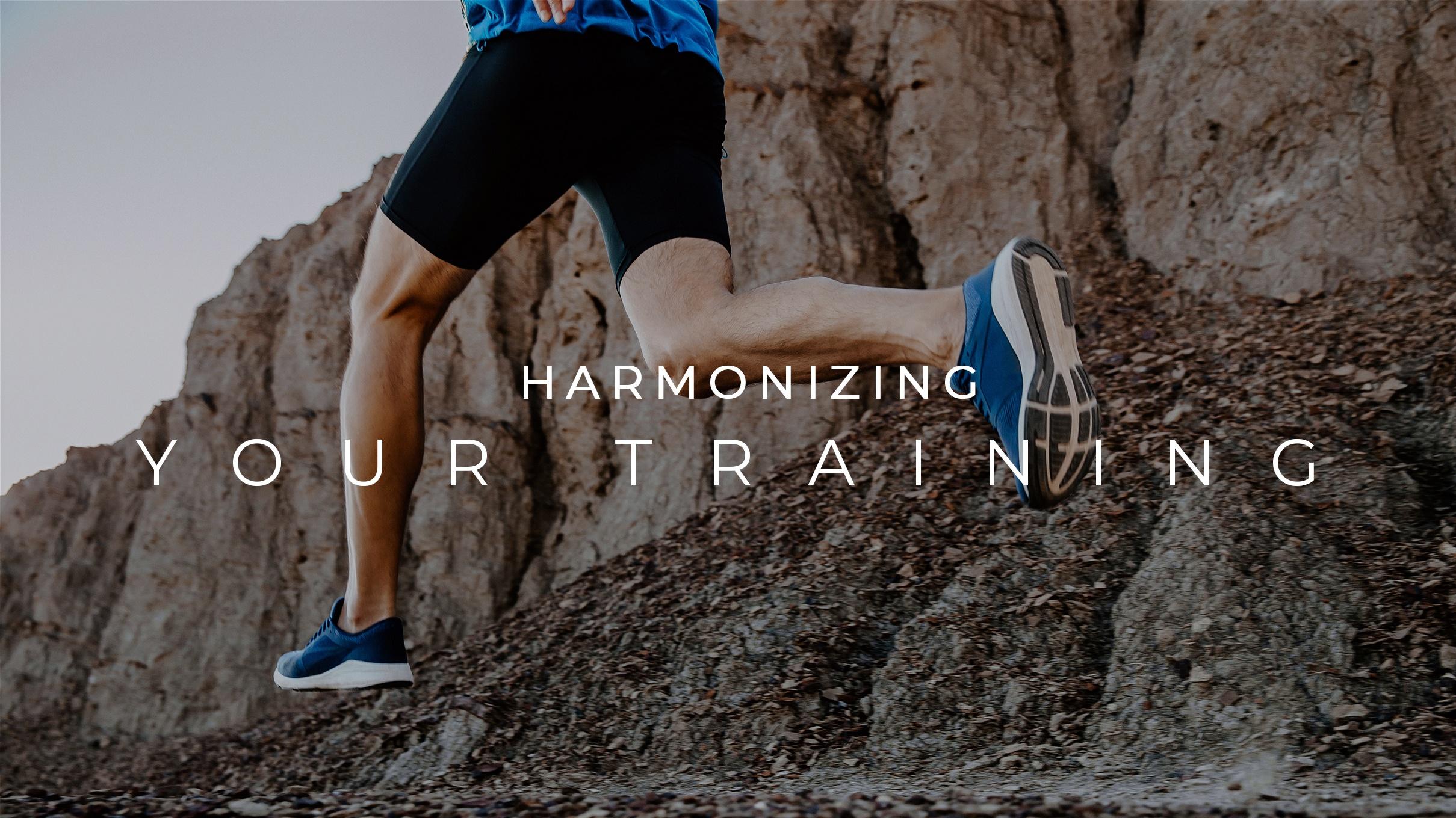 Harmonizing Your Training