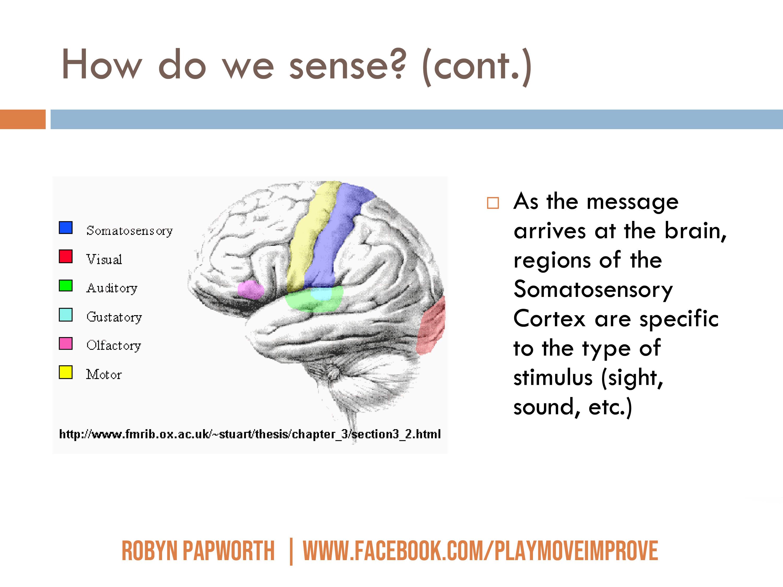 autism sensory processing online course