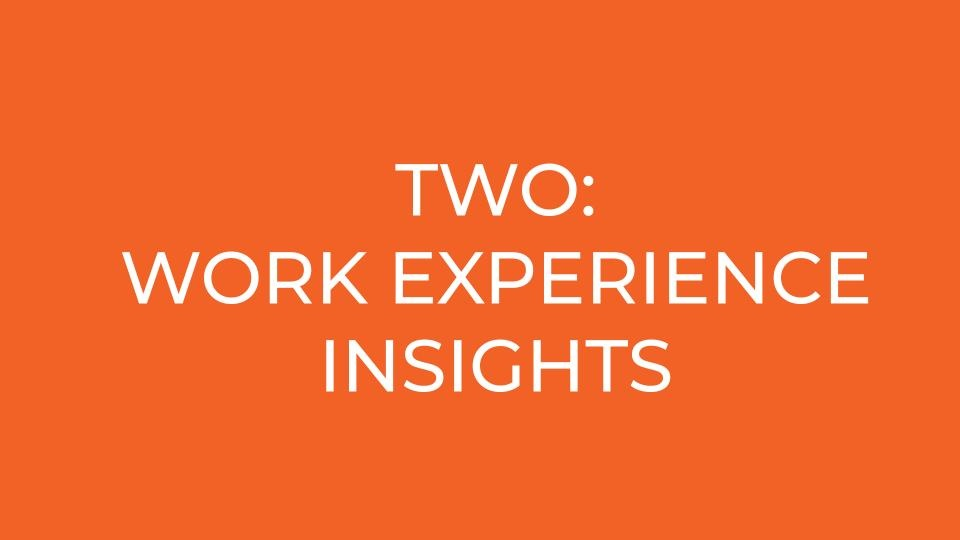 TWO: work experience INSIGHTS
