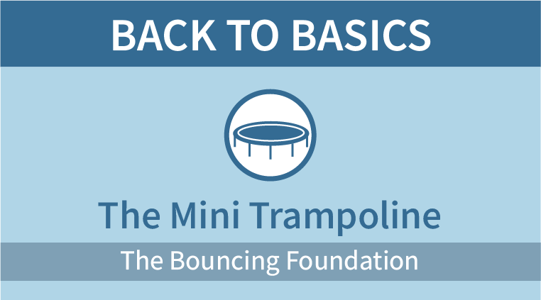 The Mini Trampoline