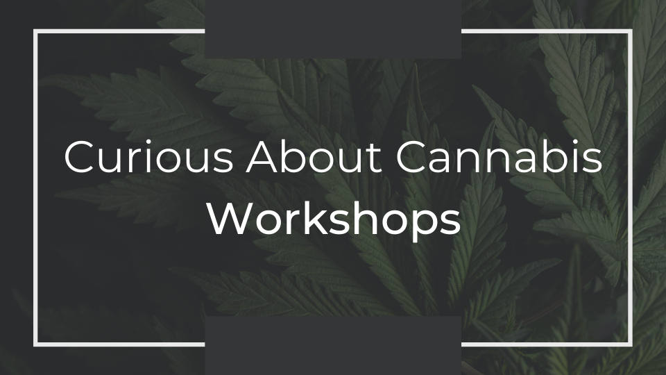 Curious About Cannabis Workshops