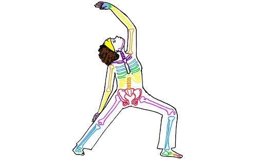 Kidsyoga anatomie