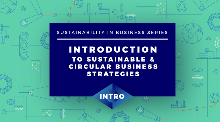 Introduction to Sustainable and Circular Business Strategies