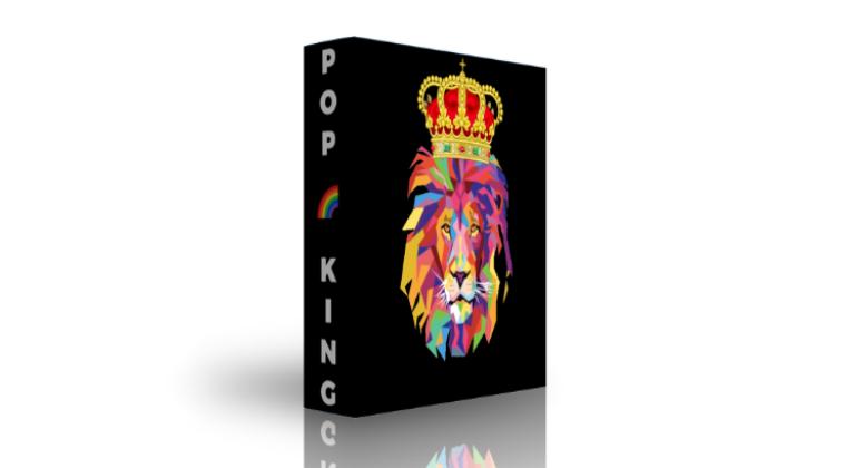 banque de sons pop (edition limitée)