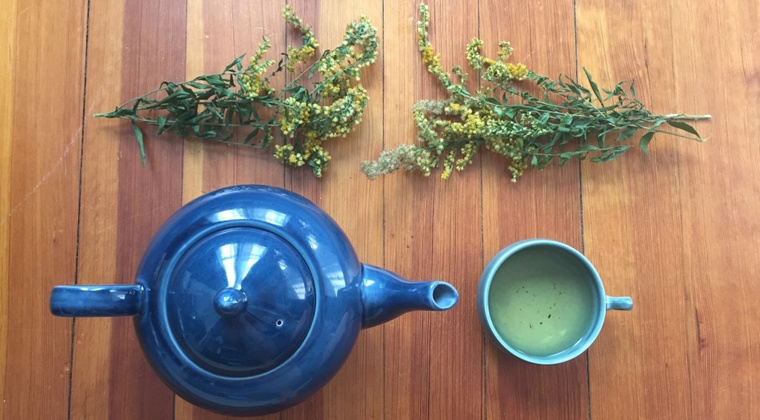 Herbalism 101: Learn Your Herbs & Make Your Medicines