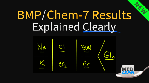 bmp / chem-7 results explained clearly