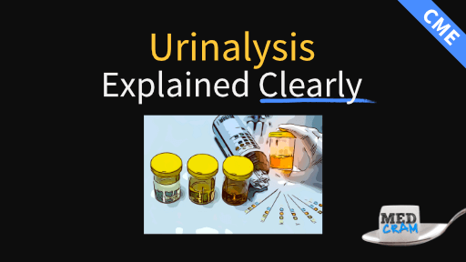 urinalysis explained clearly