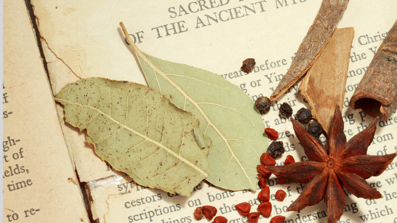 Sacred and Special Herbs